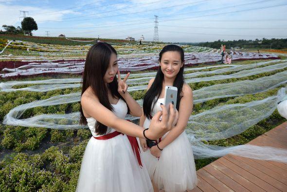 el vestido de novia más largo del mundo   estilo de vida   univision
