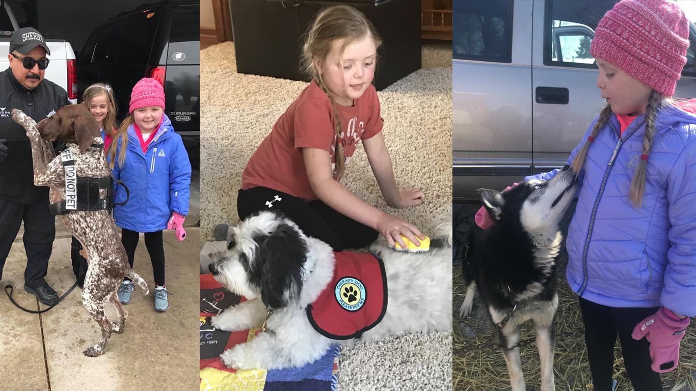 En fotos: Cómo miles de perros le han cambiado la vida a esta niña con un tumor cerebral incurable