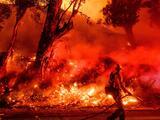 El intento del gobernador de California por bloquear el plan de PG&E para salir de la bancarrota