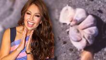 """Thalía dice haber encontrado """"manitas de aliens"""" en un paseo por la playa"""