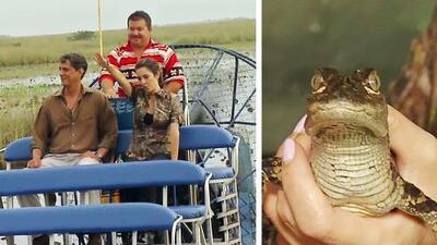 Maity Interiano se fue a los Everglades a conocer los animales típicos de un pantano