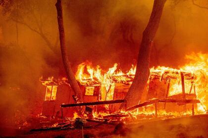 En el condado de Napa los incendios Hennessey, Gamble y 15-10 queman hasta el momento 12,200 acres de terreno y amenazan con destruir más de 200 viviendas y negocios, por lo que las autoridades han emitido múltiples órdenes de evacuación obligatorias.
