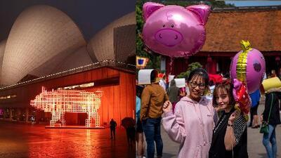 Inicia el Año del Cerdo: esto es lo que debes hacer de acuerdo a la astrología china