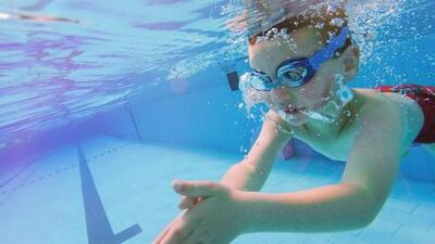 ¿Agobiado por el calor? Si vas a la piscina ten cuidado con crypto, un parásito que infecta el agua clorada y causa fuertes diarreas