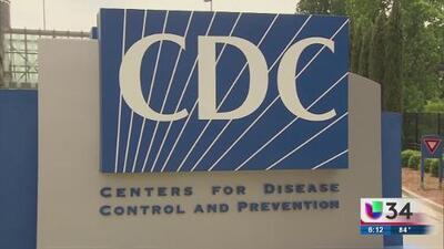 Georgia entre los estados afectados por nuevo brote de E. coli