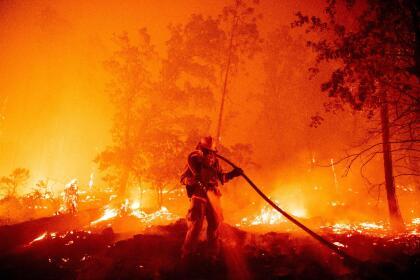 Este lunes, la situación en los incendios en los condados de Fresno, Madera, Mariposa, San Diego y San Bernardino obligaron al gobernador Newsom a decretar el estado de emergencia en las cinco jurisdicciones a fin de proveer los recursos que las agencia locales y las afectados necesitarán para superar las pérdidas millonarias a consecuencias de las conflagraciones. <br> <br> <br> <br>