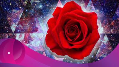 Los beneficios esotéricos de las rosas