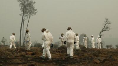 Más de 1,000 desaparecidos: a una semana de iniciados los incendios en California ya se cuentan 74 muertos