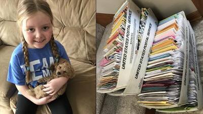 """""""Un día a la vez"""": la niña con cáncer terminal que todos los días recibe miles de fotos de perros"""