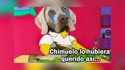 Netflix, Bad Bunny y medio mundo creó memes por la triste partida de Chimuelo