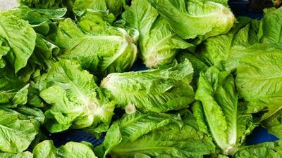 Granja vinculada al brote de E. coli en lechuga romana anuncia nuevo retiro de coliflor