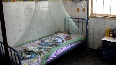 Un hito para el continente americano: Paraguay está libre de malaria
