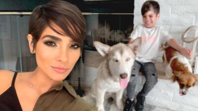 Alejandra Espinoza perdió a su perro, pidió ayuda y lo recuperó gracias a una seguidora