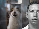 Vecino de Ciales mata al gato de su vecina salvajemente