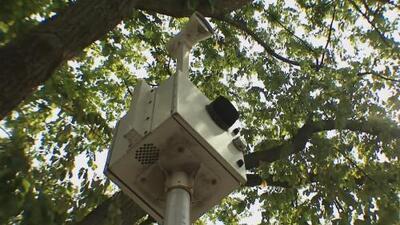 Comienza la ampliación del programa de cámaras de velocidad en zonas escolares de Nueva York