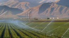 Deshielo al embalse que sirve aguas a Bakersfield disminuye al 26% de su cantidad normal
