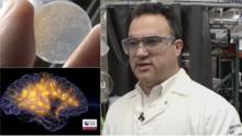 Científico hispano está a punto de descifrar los secretos del cerebro humano