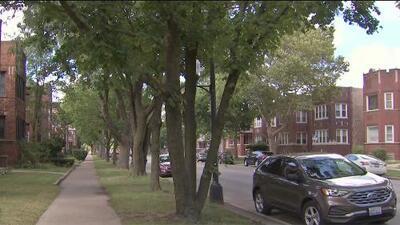 Buscan a un presunto violador en serie que ataca a mujeres en el sur de Chicago