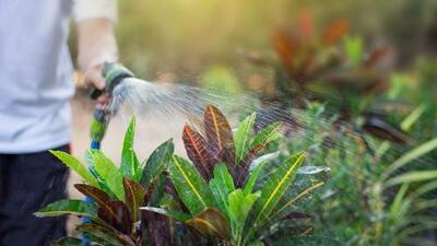 La factura de la sequía: por qué a estos residentes en California les quieren cobrar más por ahorrar agua