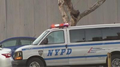 NYPD evalúa modificar sus normas sobre el empleo de esposas a mujeres bajo arresto que se encuentran embarazadas