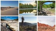 Ocho parques de Texas para disfrutar de la naturaleza en el Día Mundial de la Tierra