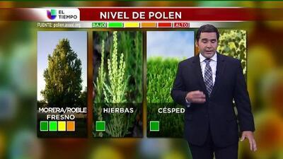 El tiempo: polen y tormentas
