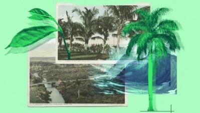 Las desconocidas riquezas arqueológicas que Miami podría perder frente al aumento del nivel del mar