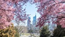 Condiciones variables para este fin de semana en Filadelfia