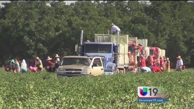 Surgen más casos de despidos injustificados de trabajadores en Lodi