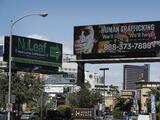 Rescatan a 39 víctimas en una operación contra el tráfico de personas en California