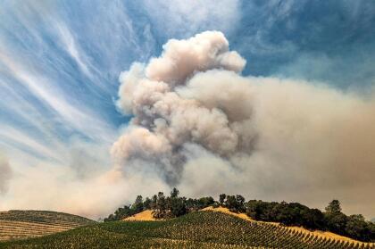"""Los fuegos <a href=""""https://www.univision.com/local/san-francisco-kdtv/incendios-provocados-por-relampagos-arden-sin-control-y-consumen-38-000-acres-en-el-area-de-la-bahia"""" target=""""_blank"""">consumen en total más de 38,000 acres</a> de vegetación y han provocado el desplazamiento de residentes en los condados de Alameda, Contra Costa, San Mateo, Napa y Sonoma."""