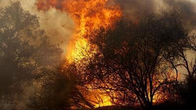 El 2018 es considerado como el peor año de los incendios forestales en California, según estudio federal