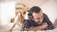La barba de un hombre tiene más gérmenes que el pelaje de un perro, según estudio