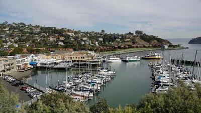 Arrestan en California a miembro de la familia Azcárraga por accidente en el que falleció su hijo de 11 años