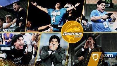 ¿Corre peligro la vida de Diego Armando Maradona en Culiacán, Sinaloa?