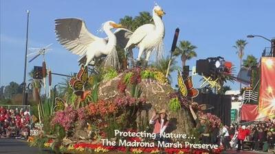 Turistas mexicanos disfrutaron del desfile de Las Rosas