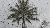 No olvides el paraguas: se esperan aguaceros en Miami para la tarde del martes