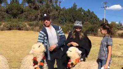 """Maravillado por las construcciones antiguas y con una """"alpaca traviesa"""", Sergio Mayer disfruta de sus vacaciones familiares en Perú"""