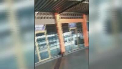 En video: Los momentos de pánico que vivieron en Venezuela por temblor de 7.3