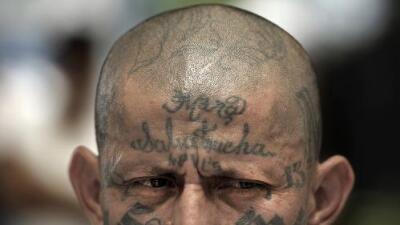 La estratégica razón por la que ahora la MS-13 prohíbe a sus miembros llevar tatuajes