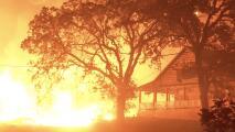 En video: Impresionantes escenas de casas y árboles devorados por los últimos incendios en California