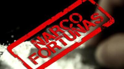 Las mil millonarias fortunas de los capos de la droga