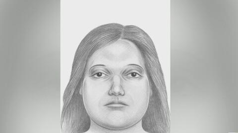Desmembrada y en dos bolsas plásticas, así apareció el cuerpo de una mujer en Nueva York