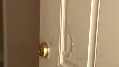 Operativo en casas y negocios dejó seis arrestos en San Mateo