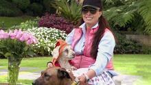 Yadhira Carrillo sigue el ejemplo que le inculcó su padre al rescatar a perros callejeros para ayudarles