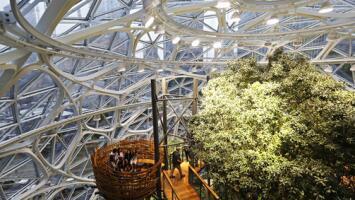 En Video: Amazon abre una 'selva' para sus empleados en Seattle