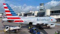 American Airlines prohibirá a sus pasajeros viajar con mascotas de apoyo emocional
