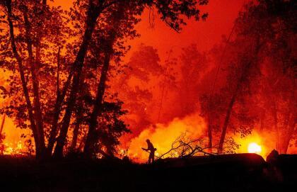Hasta este lunes, CalFire reporta más de 78,000 acres destruidos con 0% de contención. Más de 500 efectivos de bomberos trabajan en el área por tierra y por aire tratando de detener las llamas que han convertido a la zona en un verdadero infierno. <br> <br>