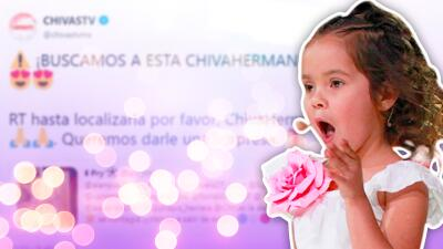 Las Chivas están buscando a su aficionada más pequeña