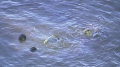 Dos militares mueren tras la caída del helicóptero de la Guardia Nacional en el que viajaban en la bahía de Galveston